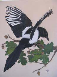 The Lady Magpie